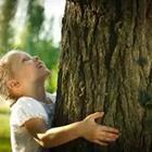Child hugging tree trunk