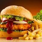 A chicken burger with French fries