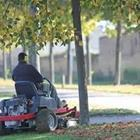 A person on a machine cutting grass by a tree
