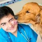 A dog licking a man in scrubs