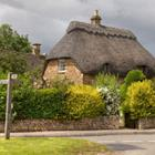 The 8 letters answer is THATCHED