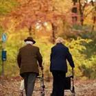 Old couple with walkers